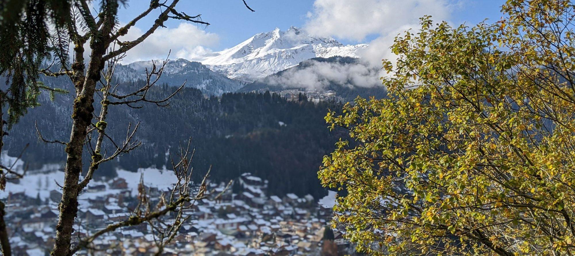 Allez Alps